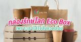 Eco-box บรรจุภัณฑ์รักษ์โลก เกาะเทรนด์ Eco
